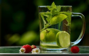 boisson froide aux citrons